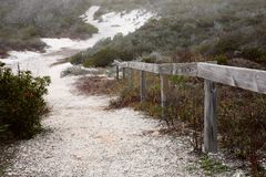 Path to the dunes Stock Image