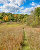 Path to Fall, Bald Mountain Recreation Area, Orion, MI Royalty Free Stock Images