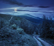 Path to forest in mountains at night. Composite landscape. path through the field with green grass in mountains near the forest at night in full moon light Royalty Free Stock Photos