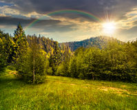 Path to forest in mountains at sunset. Composite landscape. path through the field with green grass in mountains near the forest under the rainbow at sunset Royalty Free Stock Photos