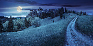 Path to fortress ruins on hillside with forest at night. Composite mountain landscape. curve path to abandoned ruins of ancient fortress through green meadow on Stock Illustration