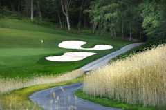 Path to the Golf Course. Path to gold course along ornamental grass Stock Photos
