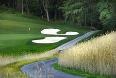 Path to the Golf Course. Path to gold course along ornamental grass stock photos
