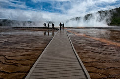 Path to the Grand Prismatic Spring. Path to the Grand prismatic hot spring at the upper geyser basin, Yellowstone National Park Royalty Free Stock Image