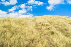 A path to heaven Royalty Free Stock Photo