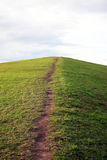 Path to the hilltop. Natural path to the hilltop Royalty Free Stock Photos