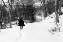 Teen on path in winter. A person walks along a path during winter after a snowfall Royalty Free Stock Photo