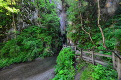 Path to the Huda lui Papara cave, Romania Royalty Free Stock Photos