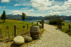 Path To Lake Wanaka Stock Image