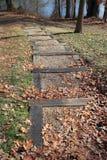 Path to Lake Stock Image