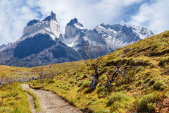 Path to the lookout on the horns of the towers of Paine, Chile. Path to the lookout on the horns of the towers of Paine, Patagonia, Chile Stock Photography