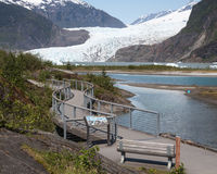 Path to Mendenhall Glacier Stock Photography