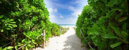 Path to the Miami Beach Stock Photos