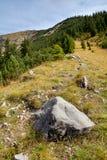 Path to mountain peak Stock Images