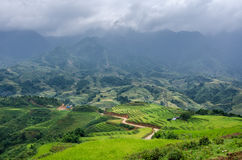 Path to the mountains, Muong Hoa valley terraced fields Royalty Free Stock Photos