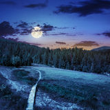 Path to mountains at night. Path with a wooden bridge near the lawn in the shade of pine trees of green forest in mountain at night in full moon light Royalty Free Stock Image
