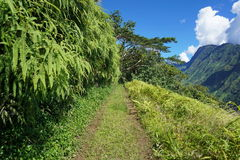 Path to the mountains of Tahiti island. With the Tuauru valley on the right side, French Polynesia, south Pacific Stock Images