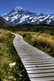 Path to Mt Cook Royalty Free Stock Photography