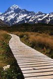 Path to Mt Cook. Wooden Path leading to Mount Cook, New Zealand Royalty Free Stock Photo