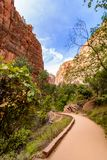 Path to the Narrows in Zion royalty free stock images
