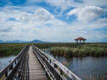Path to nature,, Khao Sam Roi Yot, Prachuap Khiri Khan, Thailand Stock Photo