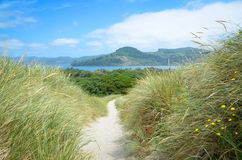 The path to Nehalem Bay Stock Photo