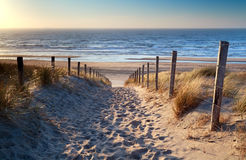 Path to North sea beach in gold sunshine stock photos