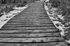 A Path to Nowhere. Photograph of a wooden path seemingly heading to nowhere Royalty Free Stock Image