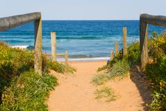 Path to Ocean Beach. Sandy path leads down to the beach and ocean on a perfect blue sky sunny day Royalty Free Stock Photo