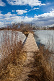 Path to our destiny. A wooden path over a frozen pond Royalty Free Stock Image