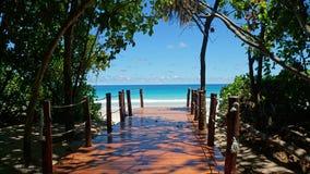Path to paradise Royalty Free Stock Photo