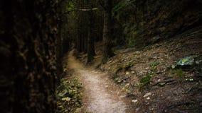 Path to primetime royalty free stock photo