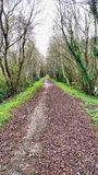 The path to quietness and bliss. Here is the path to quietness and bliss at fall royalty free stock photo