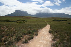 A path to Roraima. A path across Gran Sabana leading to Roraima and Kukenan tepuis (Venezuela Royalty Free Stock Photos