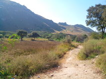 Path to the Salt Range mountains Royalty Free Stock Images