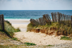Path to sand beach with beachgrass. Way to the wide sandy beache Stock Photography