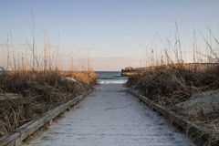 Path To Sandy Beach In South Carolina Royalty Free Stock Photography