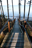Path to sea. Long wooden stairs to the beach stock images