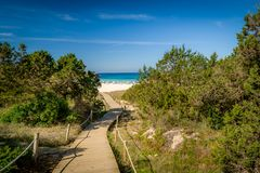 Path to the sea and sand beach Royalty Free Stock Photos