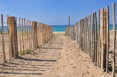 Path to the sea Royalty Free Stock Photo