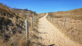 The path to the sea. Stock Image