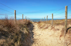 The path to the sea. Stock Photos