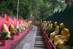 Path to Shatin 10000 Buddhas Temple, Hong Kong. Some of the 10000 Buddhas in Shatin Temple, Hong Kong. Shatin Monastery is located on a big hill. the whole path Royalty Free Stock Images