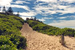 Path to shelly Beach on the new south wales central coast australia stock photography