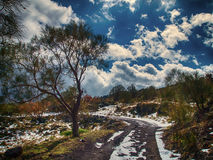 Path to sky. A path near the Etna, a Sicily volcano Stock Photography