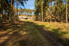 Path to St Cuthbert's Cave Royalty Free Stock Photos