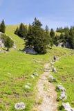 Path to summit Breitenstein Stock Photos