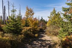 Path to the summit of Luzny, beautiful autumn sunny day. Lusen mountain Bayerischer Wald nationalpark. Mountain Lusen in the bavar Royalty Free Stock Photo