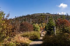 Path to the summit of Luzny, beautiful autumn sunny day. Lusen mountain Bayerischer Wald nationalpark. Mountain Lusen in the bavar Royalty Free Stock Photography