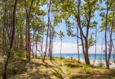 Path To The Sea In The Park. Yantarny, Kaliningrad Region. Russia